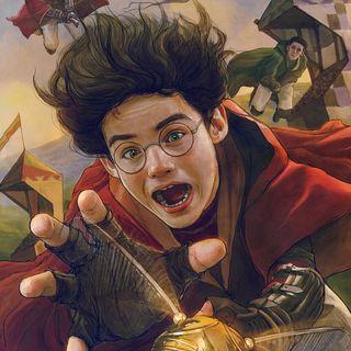 Harry Potter - cap. 11