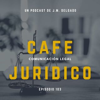103.- Declinatoria por falta de jurisdicción o competencia