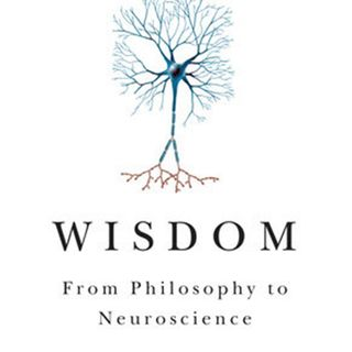 Hall: Wisdom: From Philosophy to Neuroscience