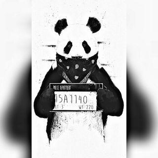Latin Music (Trap Y Reggaeton)