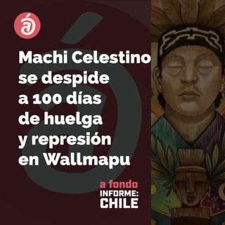 Las palabras del machi y la petición por no más racismo ni militarización en Wallmapu a 100 días de huelga mapuche: