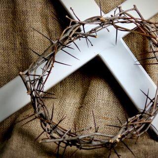 Curse of the Cross