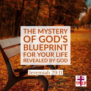 The Mystery of God's Blueprint for your Life Revealed by God