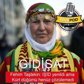 Fehim Taştekin: IŞİD yenildi ama Kürt düğümü henüz çözülemedi