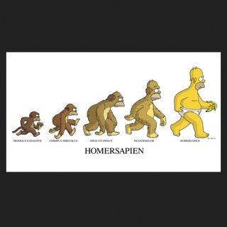 25 - L'Evoluzione Dei Dinosauri: esiste l'anello mancante tra il dinosauro e la papera? - Paleontologia
