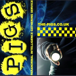 Tonight With PIGS (Audrey) Listen Live NOW