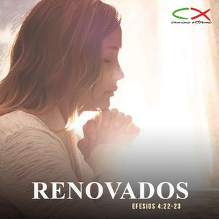 Oración 10 de febrero (Renovados)