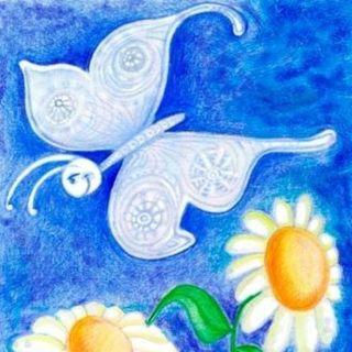 La Mariposa Blanca - Cuento Infantil