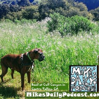 MIKEs-DAILY-PODCAST-1663-Happened