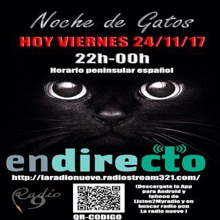 NOCHE DE GATOS 24 DE NOVIEMBRE