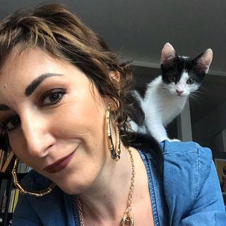 Intervista Fraintesa: ho interrotto il giro del mondo, non per mia volonta. Ma combatto!