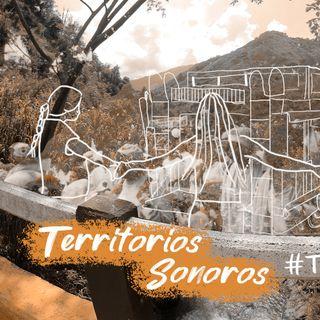 03 Territorios Sonoros - #TómateCaicedo