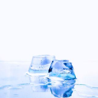 16- Congelación