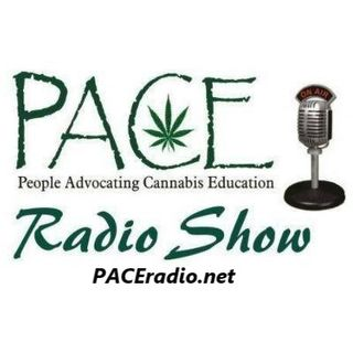 The PACE Radio Show - Guest: Richard Jergenson of Cannabis Culture Museum - Hosts: Julie Chiariello & Al Graham
