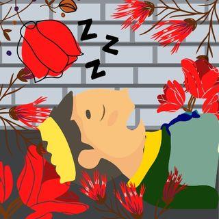 El Bello Durmiente