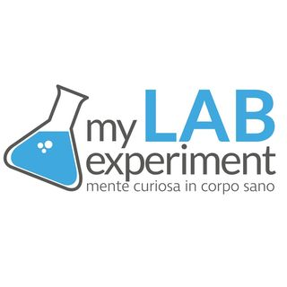 My Lab Experiment