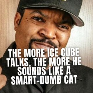 10.29 | The More Ice Cube Talks, The More He Sounds Like A Smart-Dumb Cat