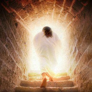 Ascensione del Signore (anno C) - 2 giugno 2019
