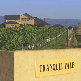 Ep 309: Tranquil Vale of Hunter Valley, Australia on Boutique Wine, Bushfires, and Climate Change