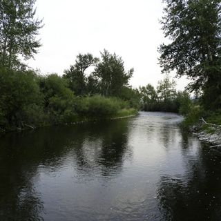 EarthFix Podcast: How logging and farming affect water quality in the NW http://earthfix.us/pod0816
