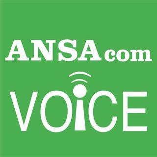 ANSAcom Voice