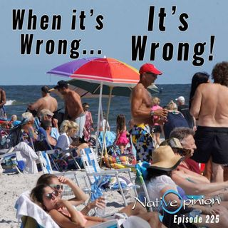 "Episode 225 ""When it's Wrong... it's Wrong"""