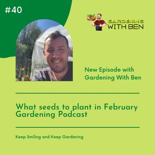 Episode 40 - What seeds to plant in February Gardening Podcast