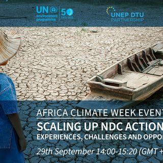 Clima, finanziamenti e investimenti in Africa