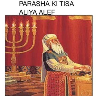 PARASHA KI TISA - Y HARAS UN CENSO