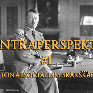 Kontraperspektiv #1 - Nationalsocialism skärskådad