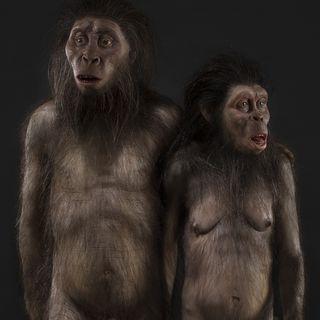 Le cose che non sai sulla nudità - Angolo della Nontizia