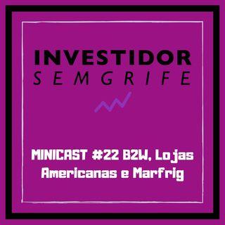MINICAST #22 B2W, Lojas Americanas e Marfrig