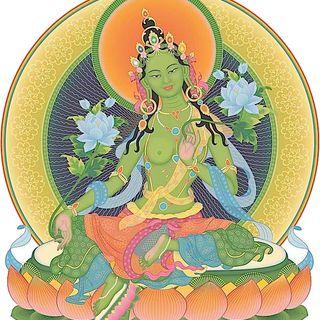 Meditazioni Guidate e Preghiere