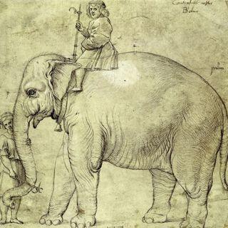 La posesión de animales como símbolo de poder en la Edad Media