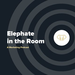 Elephate in the Room
