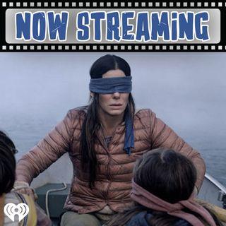 "Now Streaming: ""Bird Box"" [Netflix]"