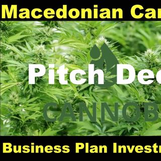 Macedonia Business Plan Investment Review