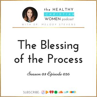 S03 E026: The Blessing of the Process