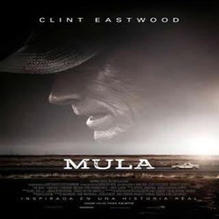 La mula de Clint Eastwood y recomendación series