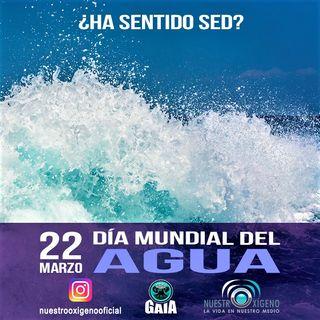 NUESTRO OXÍGENO 22 de marzo Día Mundial del Agua 2021
