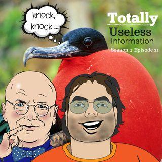 TUI Podcast Season 2- Episode 21