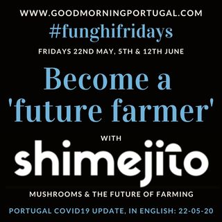 Portugal Covid news & weather update PLUS 'Sustainable Food Farming'