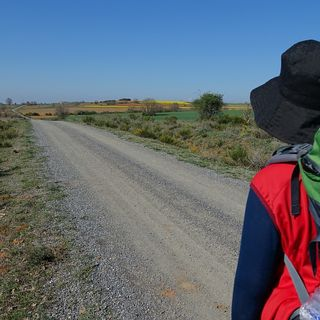 Moscow misadventures, Camino de Santiago, pet travel and country music