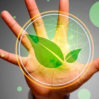 Derecho ambiental y derechos de la naturaleza