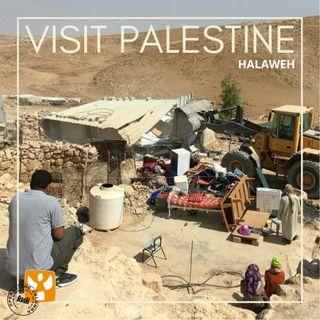Visit Palestine: 04 Villaggio di Halaweh - Demolizioni