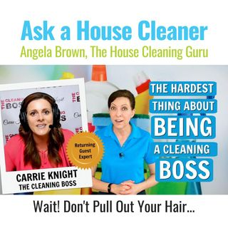 The Hardest Thing About Being a Cleaning Boss with Carrie Knight