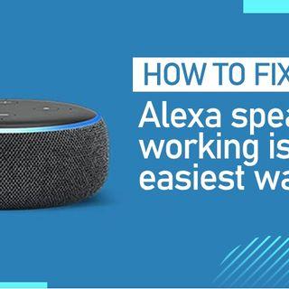 How to Fix Echo Dot Speaker Not Working