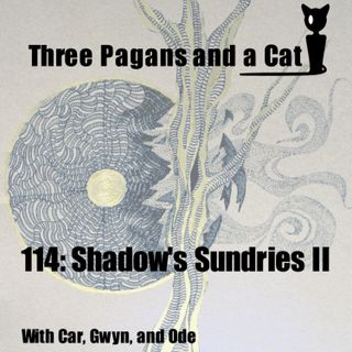 Episode 114: Shadow's Sundries II