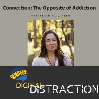 Connection: The Opposite of Addiction