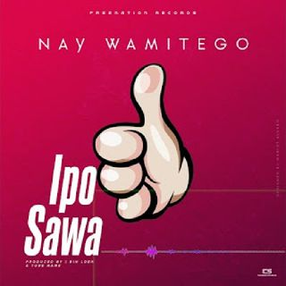 Nay Wa Mitego - Ipo Sawa (official Video)